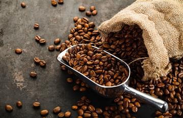 Bolivia generó millones de dólares por la exportación de café en 2018