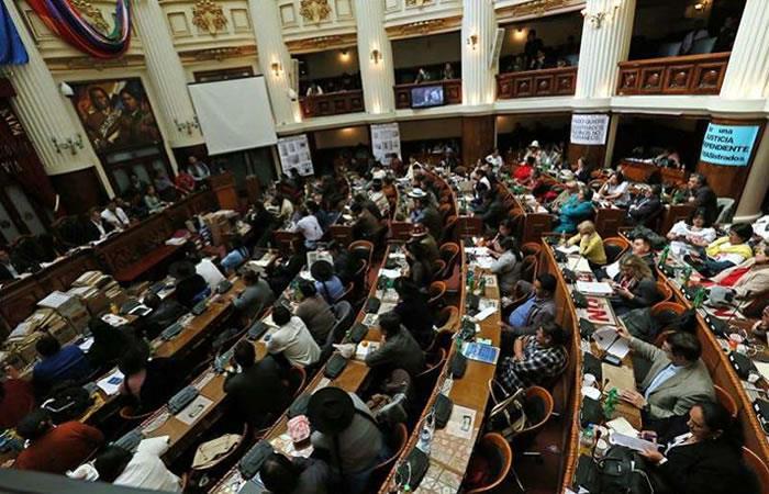 Parlamento boliviano debate sobre el daño causado por las privatizaciones. Foto: EFE.