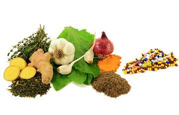 Conoce los mejores antibióticos naturales