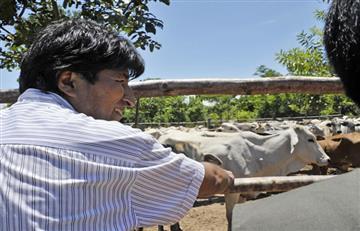 Bolivia enviará su primera carga de carne vacuna a China