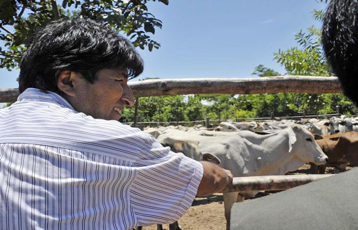 Comisión de China llega para evaluar importación de carne boliviana