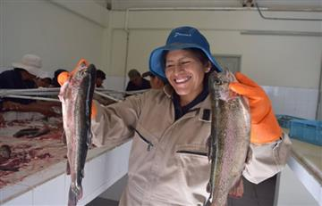 Semana Santa: VI Feria del Pescado ofertará 20 toneladas de distintas variedades