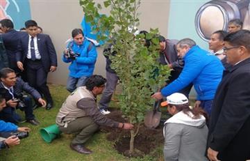 Medio ambiente: Morales plantó el árbol 100 mil en La Paz