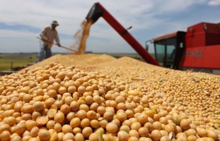Gobierno boliviano aumenta hasta 60% exportación de soya