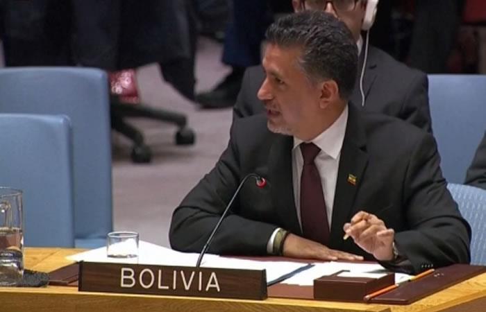 Embajador boliviano ante ese organismo internacional, Sacha Llorenti. Foto: ABI.