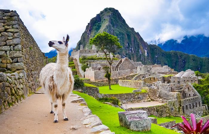 Bolivianos podrán deleitarse de comida deliciosa en Perú, gracias a los juegos panamericanos. Foto: Shutterstock