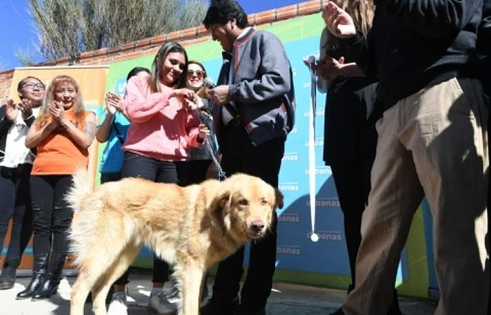 Presidente de Bolivia, Evo Morales con el canino que adoptó. Foto: ABI