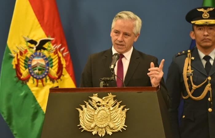 El vicepresidente Álvaro García Linera. Foto: ABI.