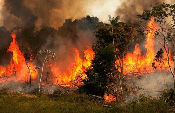 Incendio en Amazonas lleva ardiendo desde principios de agosto. Foto: Twitter