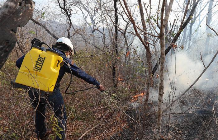 Voluntario boliviano durante un incendio el 27 de agosto en San José de Chiquitos. Foto: EFE