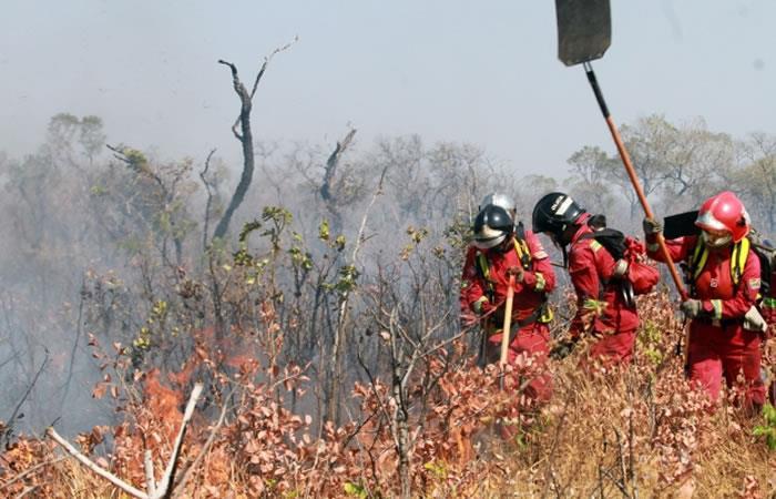 En el reporte se añaden dos nuevas regiones en las que se 'reanimó' el fuego. Foto: ABI.