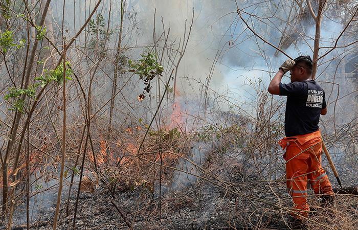 Los incendios forestales enBoliviapersisten desde hace más de un mes. Foto: EFE