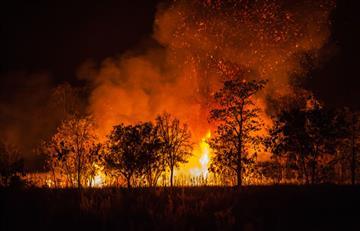 Incendio de gran magnitud afecta zona boscosa en el Parque Nacional Tunari