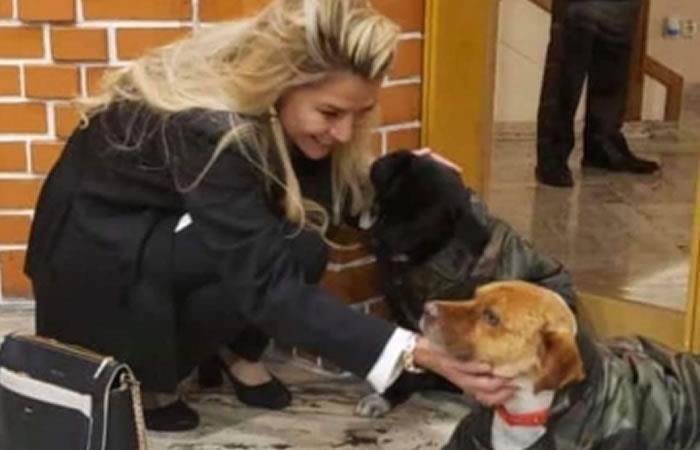 Presidenta Interina Jeanine Áñez adoptó a dos mascotas. Foto: ABI