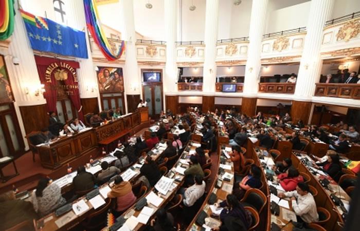"""Diputados de Bolivia aprueban Ley """"Garantías para el Ejercicio plenos de los Derechos Constitucionales"""". Foto: ABI"""