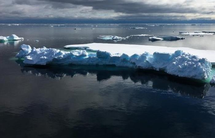 El deshielo sorprende por su impacto en el nivel del mar en el planeta. Foto: tomada Twitter.