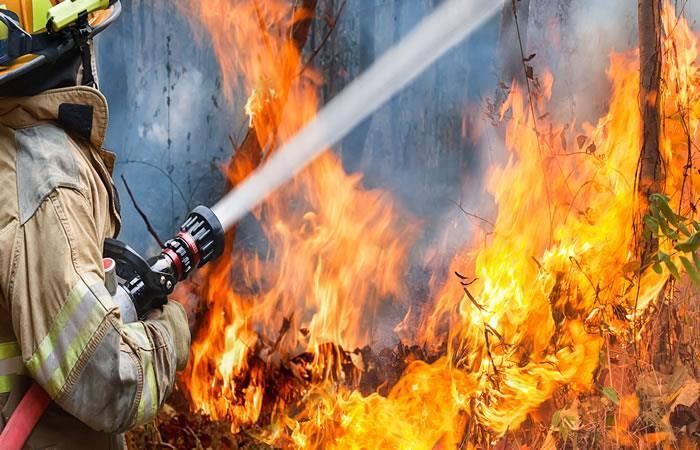 El cuerpo de Bomberos atendió las emergencias por incendios forestales. Foto: Shutterstock