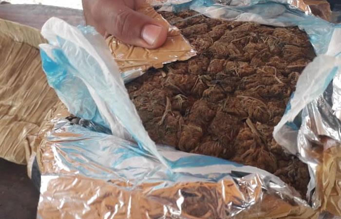 Están usando bolivianos para traficar drogas. Foto: Twitter