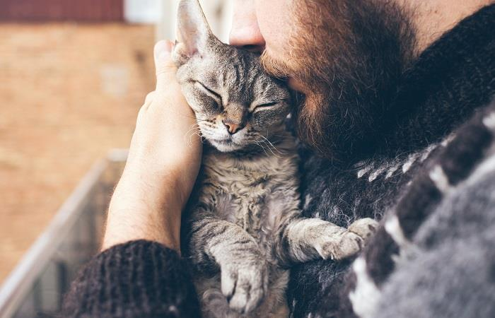 Cuidados que debes tener con tu mascota. foto: shutterstock
