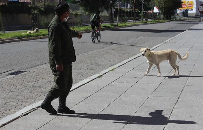 Miembro de la Policía mientras llama a un perro callejero en La Paz. Foto: EFE.