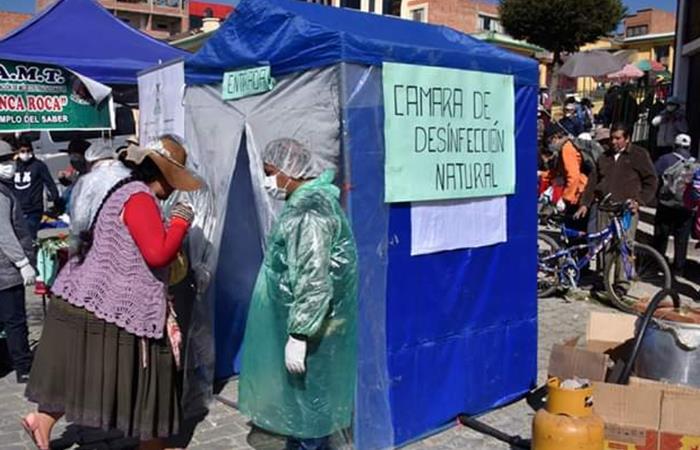 Cabinas nebulizadoras con plantas medicinales. Foto: Twitter/ @LosAndesBolivia