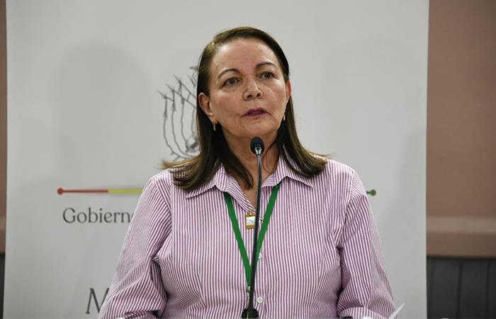 Eidy Roca fue designada como Ministra de Salud encargada. Foto: ABI