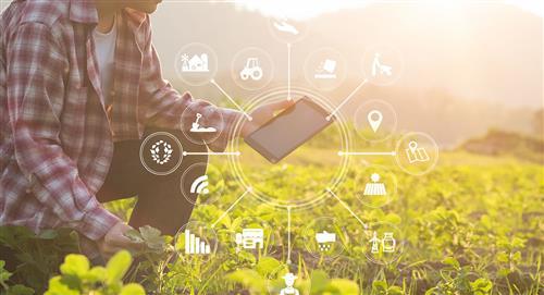 Tecnología y agricultura se unen en un concurso en Bolivia ante la COVID-19