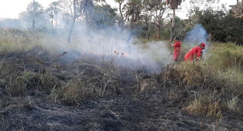 Recientes incendios en Beni. Foto: ABI