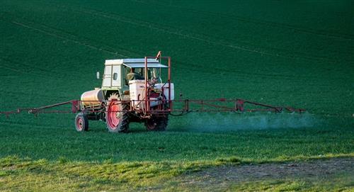 Las implicaciones de los transgénicos en la agricultura boliviana
