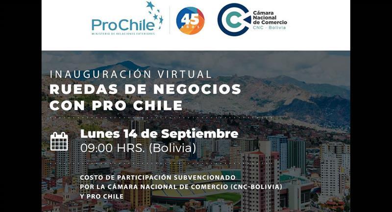 Bolivia y Chile realizarán una rueda de negocios virtual del 14 al 16 de septiembre. Foto: ABI
