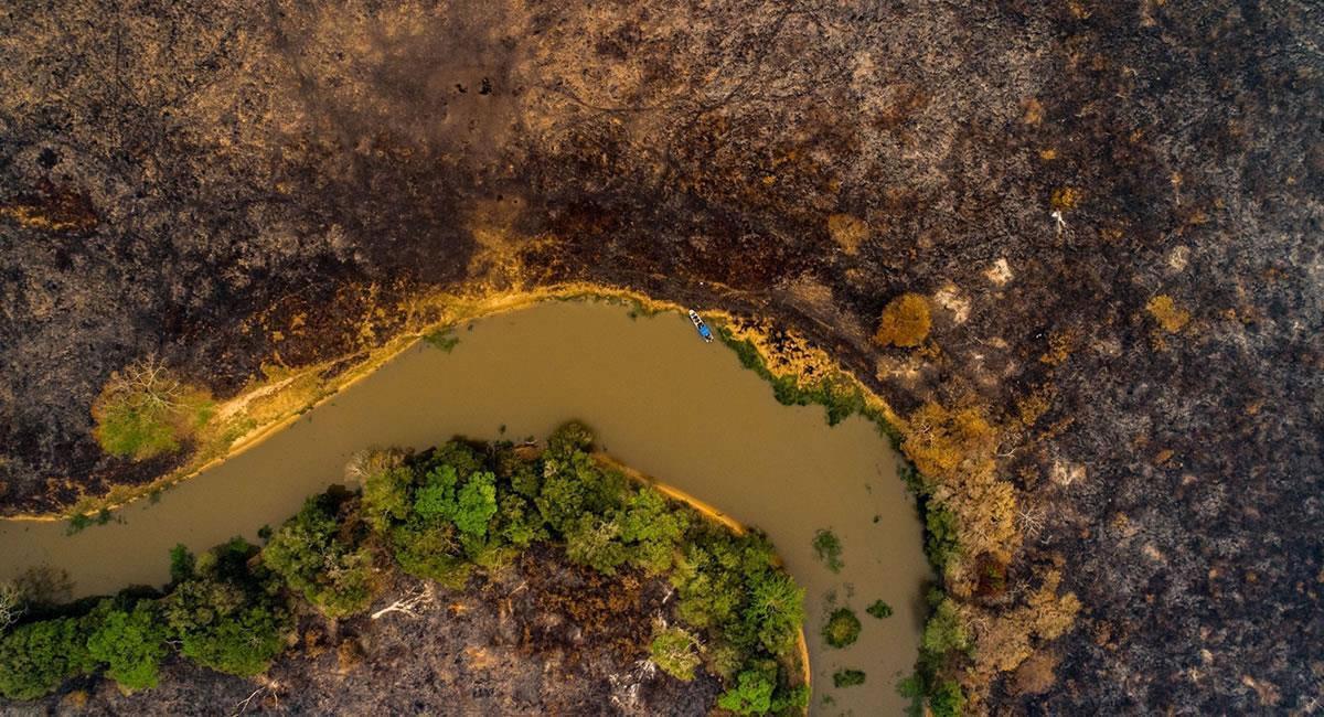 Río que atraviesa una zona devastada por los incendios forestales. Foto: EFE