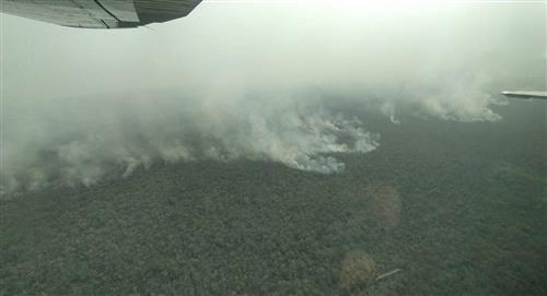 Varios incendios dejan un desastre ambiental y familias amenazadas en Bolivia