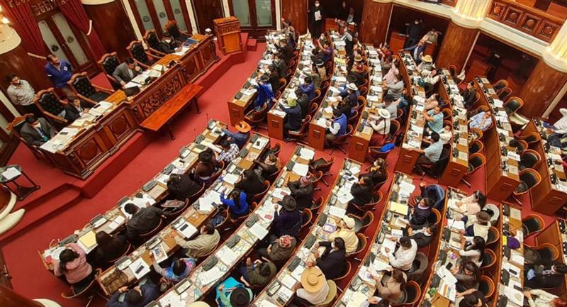Diputados aprobó ley para elecciones subnacionales. Foto: ABI