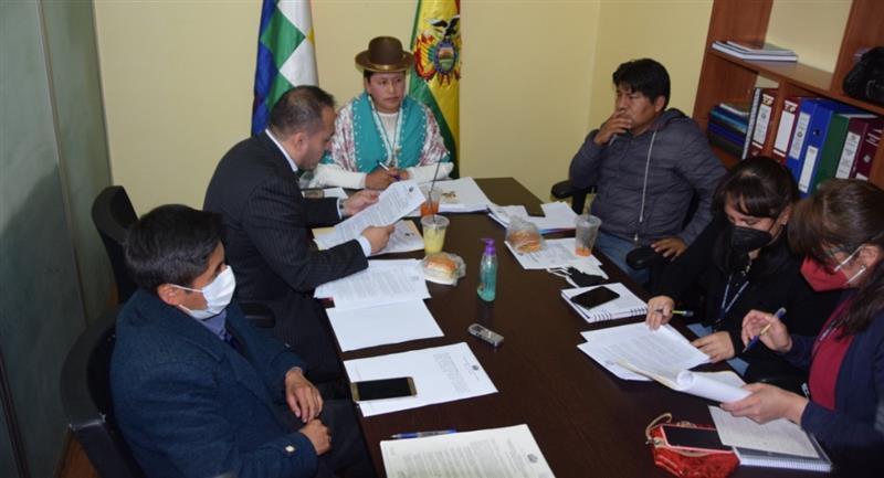 La Comisión de Constitución de la Cámara de Senadores. Foto: Twitter @SenadoBolivia