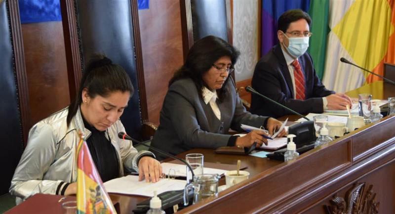 El presidente del TSE brinda su informe al Senado. Foto: ABI