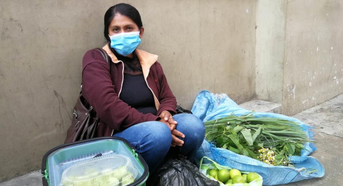 Las plantas medicinales vuelven a tener alta demanda en Tarija. Foto: ABI