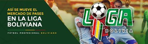 Altas, bajas, y renovaciones de los equipos bolivianos
