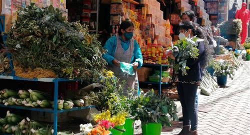 Productores ecológicos ofrecen kit de plantas medicinales anti COVID-19