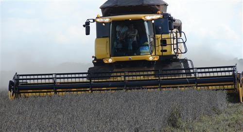 El Gobierno boliviano ratifica el control de precios rechazado por el agro