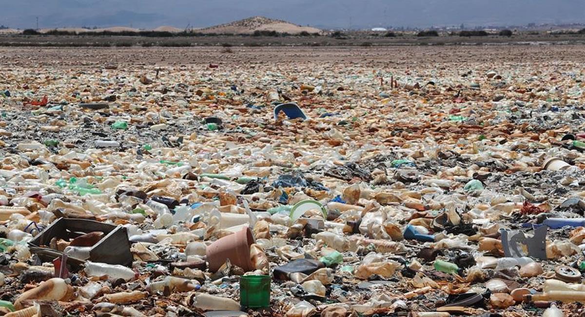 Contaminación en el lago Uru Uru. Foto: EFE