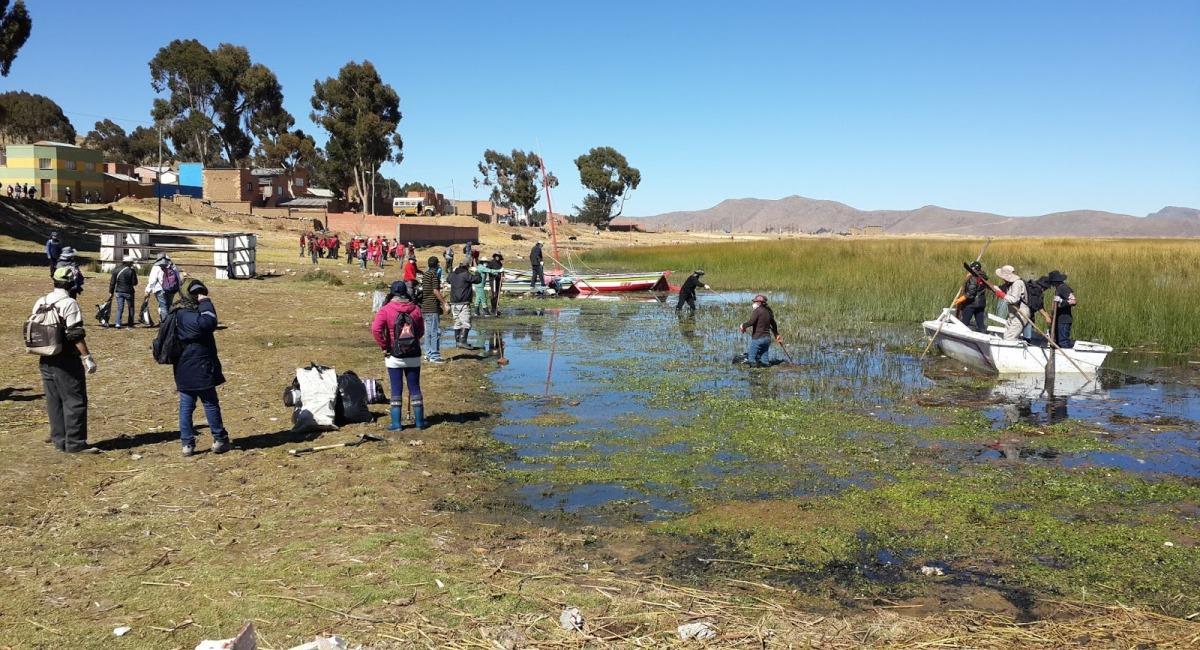 Limpieza del Lago Titicaca. Foto: ABI