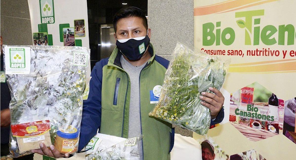 Ministerio de Salud promueve el uso de medicina tradicional. Foto: ABI