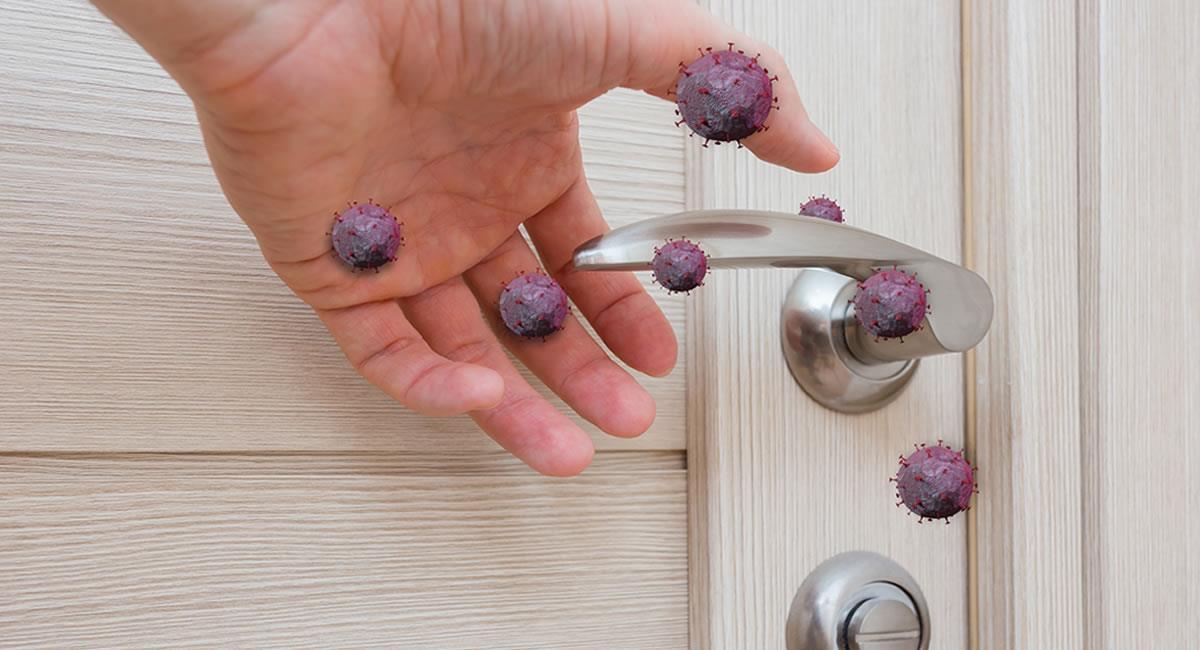 Recomendaciones para mantener un hogar libre de virus y de bacterias. Foto: Shutterstock