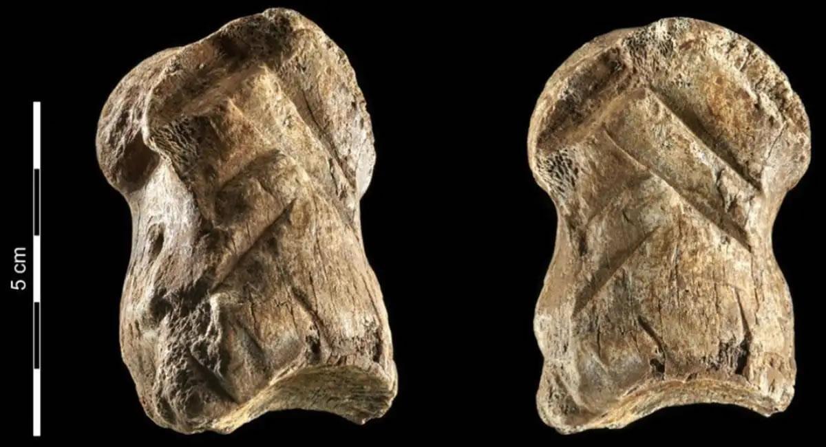 El hueso fue encontrado en la antigua entrada de la cueva de Einhornhöhle, al norte de Alemania. Foto: EFE