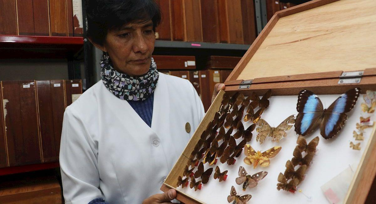 La bióloga boliviana Julieta Ledezma. Foto: EFE