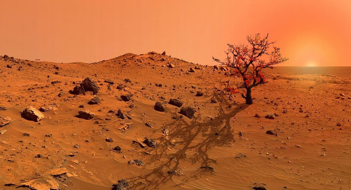 ¿Habrá vida en Marte?. Foto: Pixabay