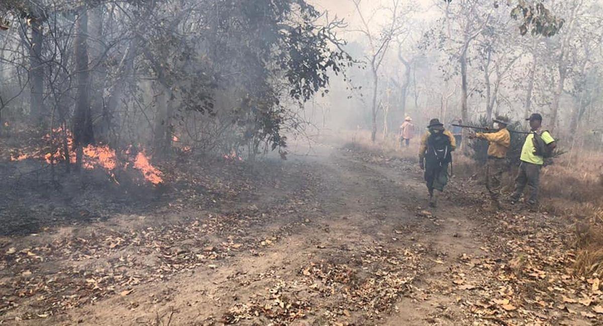 Incendios forestales en Bolivia. Foto: ABI