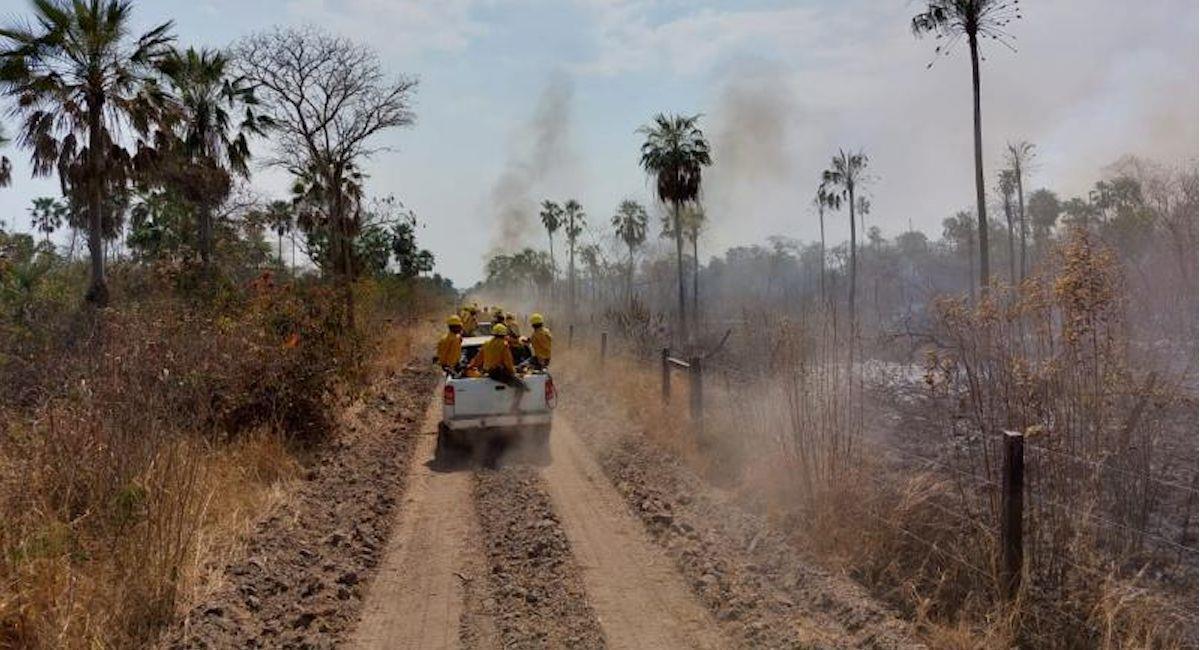 Incendios forestales persisten en Santa Cruz. Foto: ABI