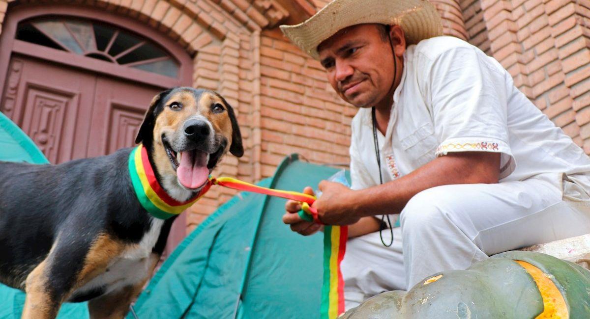 Penoco, el perro que acompaña la marcha indígena. Foto: EFE