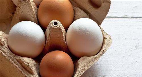 Beneficios y recomendaciones para consumir huevo